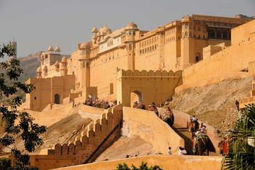14 Day Rajasthan adventure: Multi Activity Holiday in India
