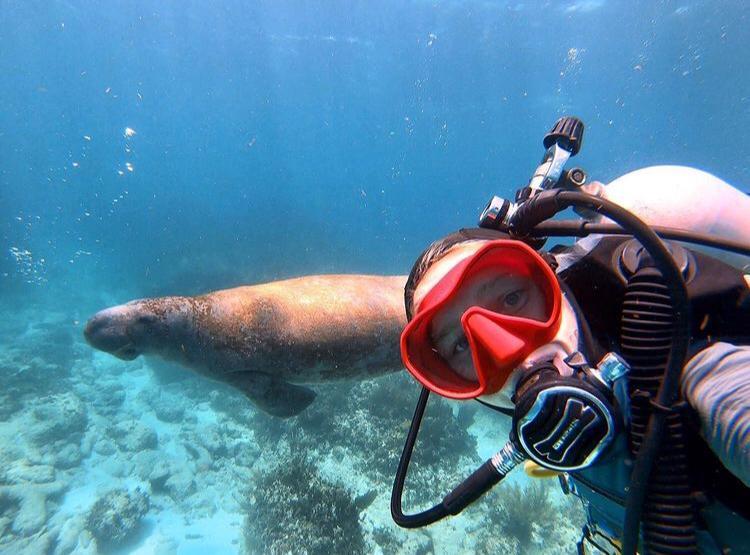 2 dives: Banco Chinchorro scuba dive experience Mexican Caribbean