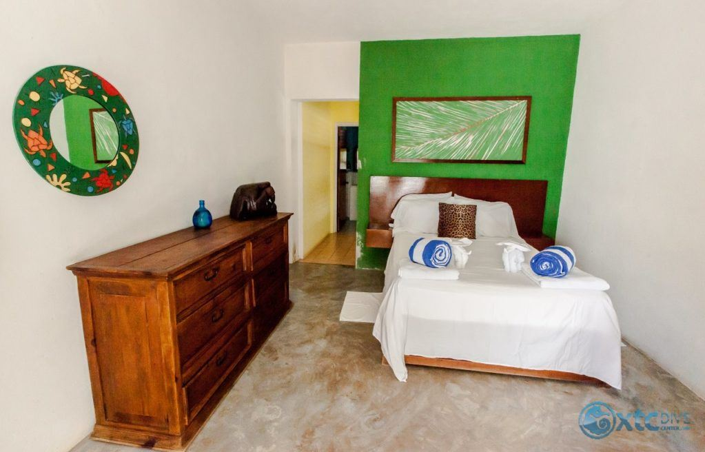 Xcalak beach-front room in the Mexican Caribbean (Selva Room)