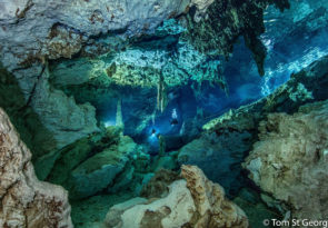 3 Day Tulum Cavern Scuba Diving Experience in Mexico
