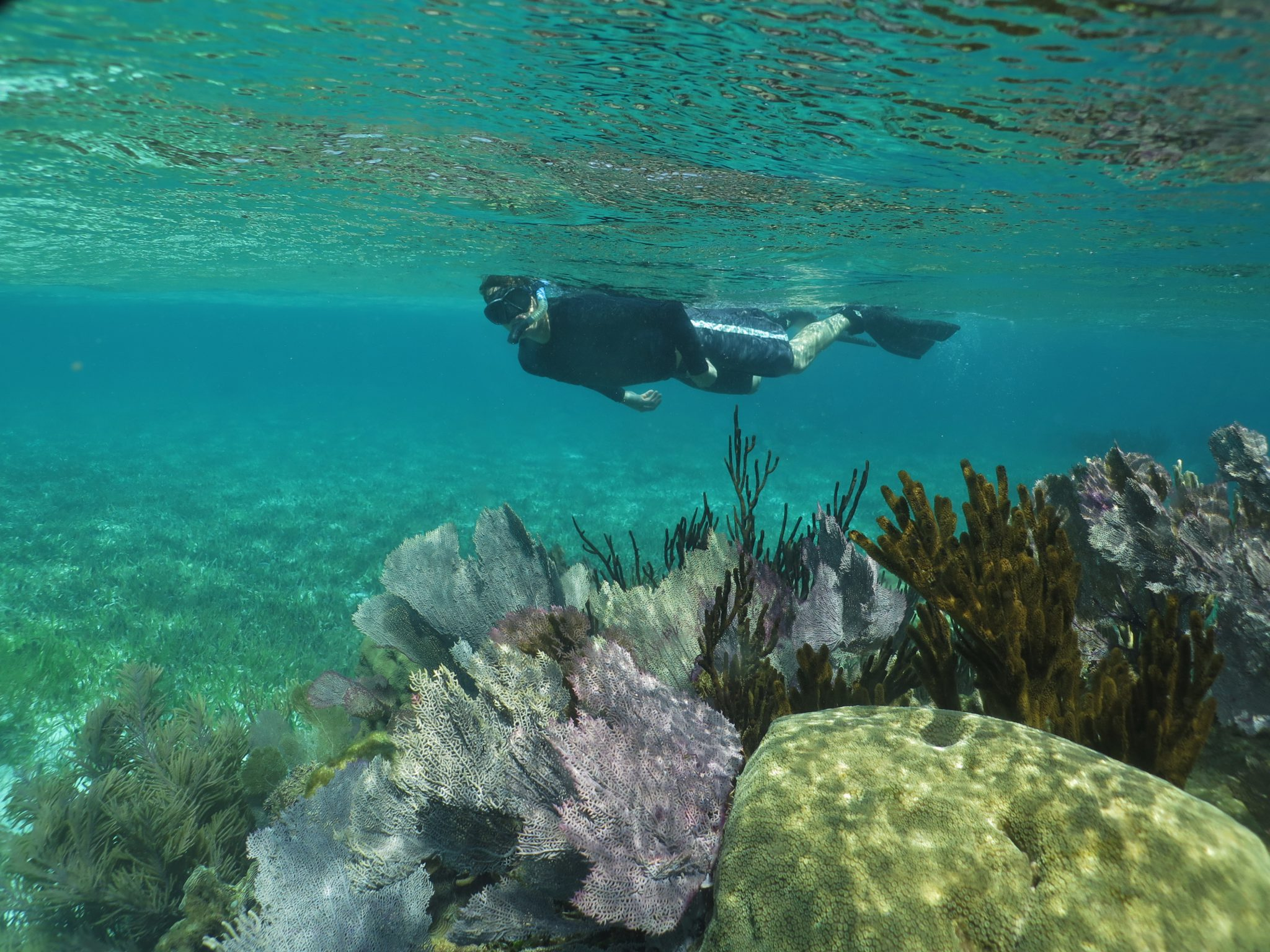 Mexico snorkeling experience in Cozumel