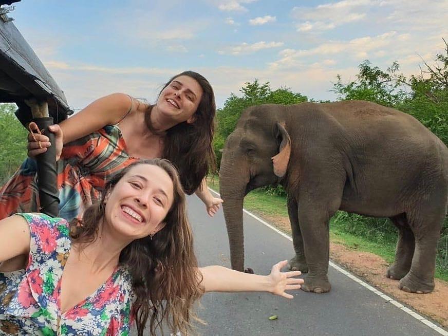 Amazing Sri Lanka safari holiday: Whale, Turtles and Wildlife