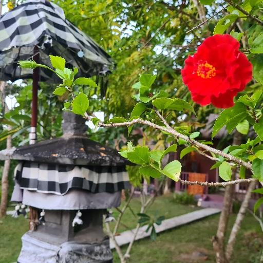 Hindo shrine in Nusa Penida Photo by Cara Rees