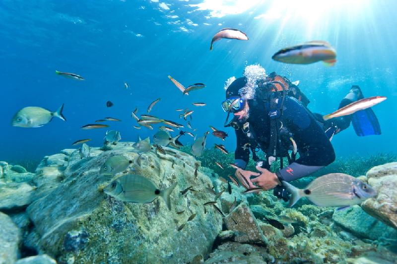 Scuba diver off the coast of France