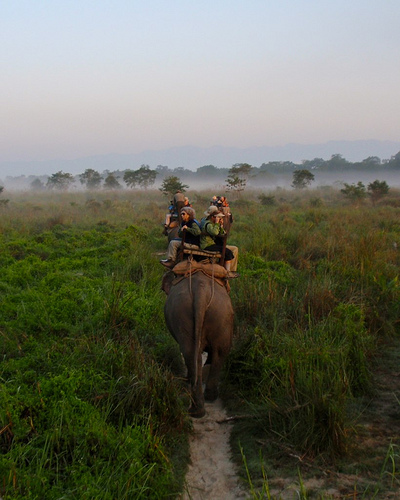 India, Nepal, Adventure Travel, Trekking, Trekking in Nepal, Everest, Explore, Everest Base Camp, Trekking Holidays, Overland, Overland Holidays
